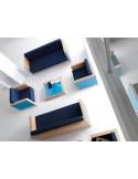 Ensemble salon collection VIP, table basse, Canapés 2 places, chauffeuses.