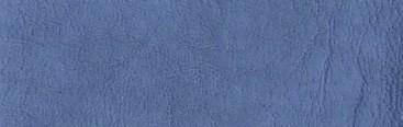 Blue jean 01173013