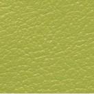 Vert pistache T1/311