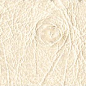 Cuir blanc T2/566