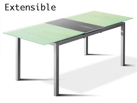 modèle acier et verre Extensible